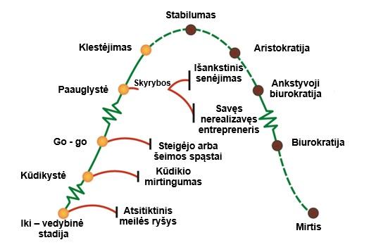 Verslo žinios Apie Adizes Metodologiją
